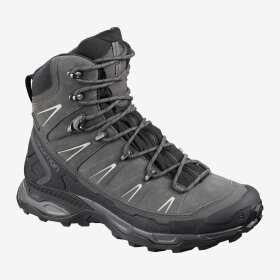 SALOMON - W X ULTRA TREK GTX
