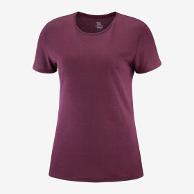 SALOMON - W COMET CLASSIC TEE HEATH